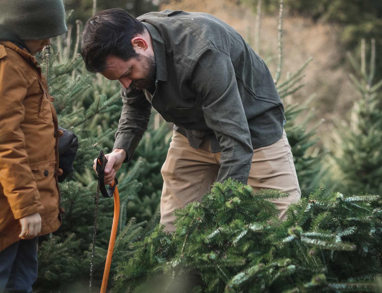 Christmas-Tree-Farm---Freshly-cut-christmas-trees
